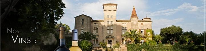 Couleurs de Terroir, Chateau Saint Martin la Garrigue, AOP Languedoc