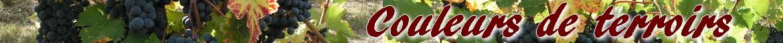 Couleurs de Terroir, Négociant vins du Languedoc, Vins Sud de France, Vins pour les restaurants, Caveaux, Bars à vins.